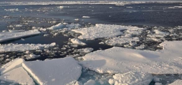 Arctic ice. [Image credit: Patrick Kelley/Wikimedia Commons]