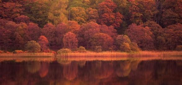 Ireland In Autumn - Image - By Magdalleny (Own work) | CC BY-SA 4.0 | Wikimedia Commons