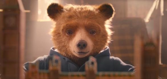 The cuddly Peruvian bear wishes to buy his Aunt Lucy a London pop-up book-Youtube/StudiocanalUK