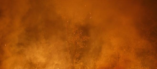 Incendi in Galizia, i dati smentiscono l'ipotesi dei piromani