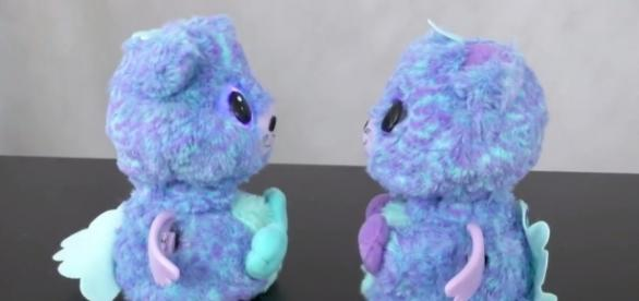A set of twins from Spin Master's 'Hatchimals Surprise' interacting. | Credit - (TTPM Toy Reviews/Youtube)