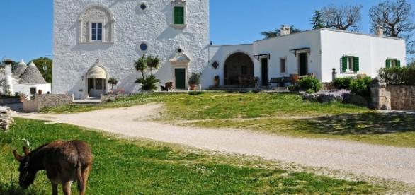 Vacanze in Puglia, gli stranieri prediligono l'agriturismo - Controweb - controweb.it