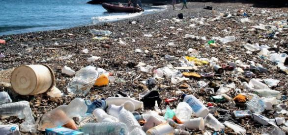Cada año gran cantidad de basura llega a las costas Españolas