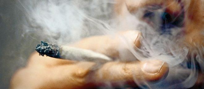 Jamaika-Sondierungen: Wird Cannabis legalisiert?