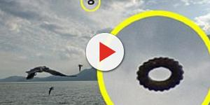 Avvistamento di un Ufo a forma di ciambella in Cina