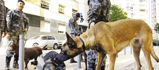 BAC - Batalhão de operações com cães