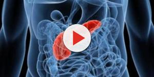 Tumore al pancreas: le ultime news dopo la giornata mondiale dedicata a questa terribile malattia - newsitaliane.it