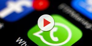 WhatsApp: la vostra privacy è a rischio