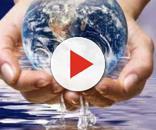 Acqua: sostanza semplice, ma nutriente essenziale alla base della ... - fitmivida.com