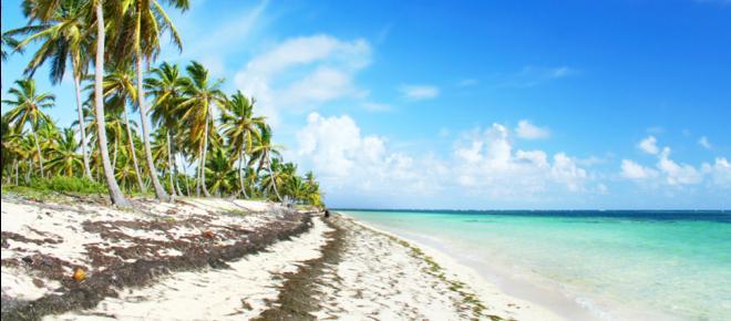 """Jamaika-Ende: Wie bitte, kann man """"falsch regieren""""?"""