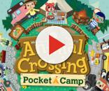 'Animal Crossing: Pocket Camp' available now [photo via ac-pocketcamp.com]