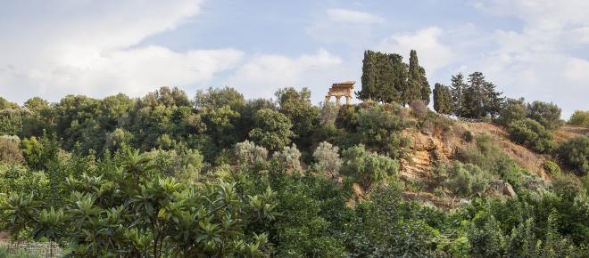 Il giardino di delizie della Valle dei Templi di Agrigento: la Kolymbetra
