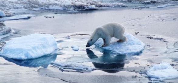 Das Antarktis-Eis schmilzt schneller als erwartet