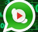 WhatsApp non potrà essere più aggiornato su alcuni cellulari.