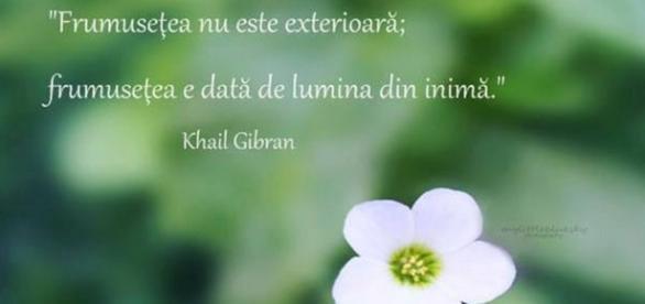 Citatul aparine marelui poet #Khalil Gibran