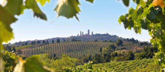 Vacanza a San Gimignano: tra agriturismi, storia, natura ed ottimo vino