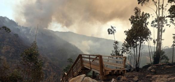 Passadiços de Arouca atingidos pelas chamas