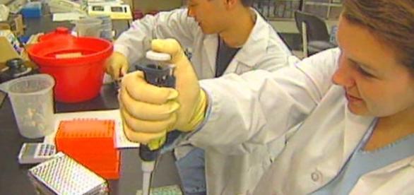 Estudos mostram que a cura da Aids pode estar próxima