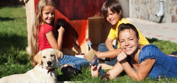 Detrazioni fiscali per gli animali domestici: ecco come fare | Gli ... - maxizoo.it