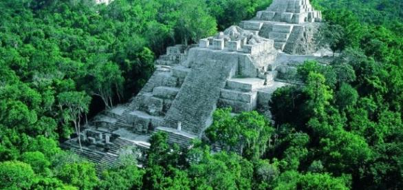 Calakmul, una joya sumergida en la selva mexicana