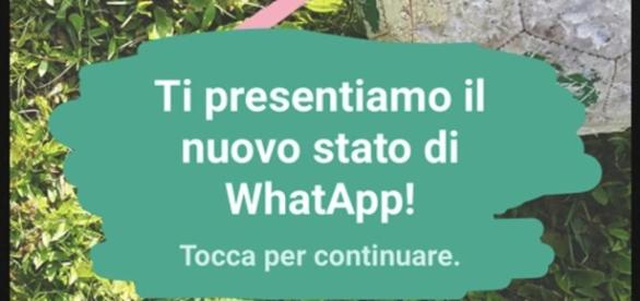 """Nuova funzione su WhatsApp per condividere lo """"stato""""."""