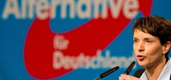 Will Frauke Petry etwas verschleiern? - katehon.com