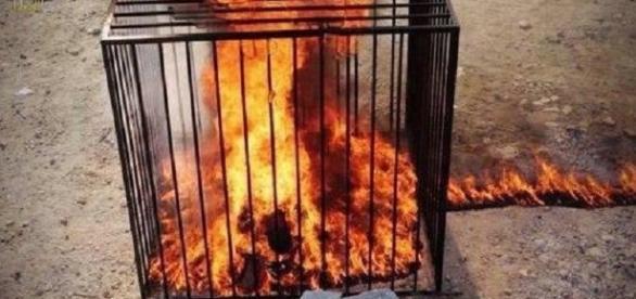 Estado Islâmico voltou a queimar cristãos vivos (Foto: Reprodução)