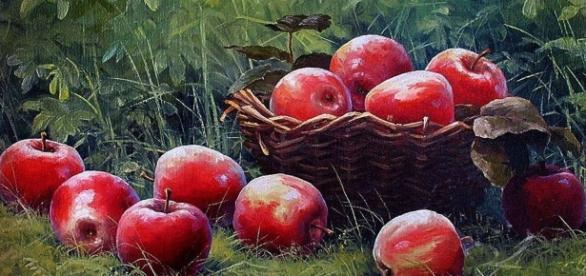 A importância da maçã na alimentação humana