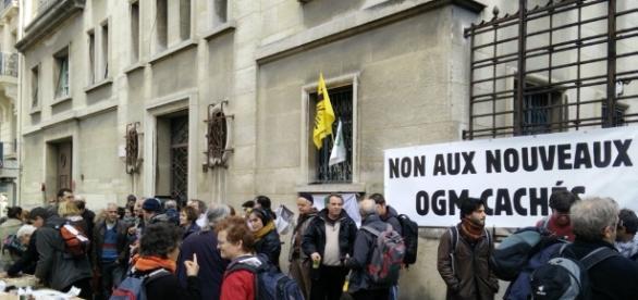 Greenpeace, l'Union Nationale de l'Apiculture Française, majoritaire à 85 % chez les apiculteurs, et six autres organisations dénoncent un scandale