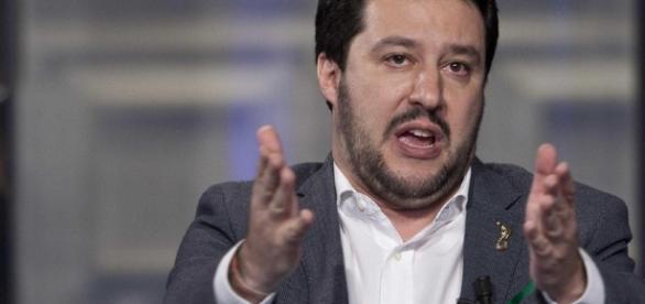 Matteo Salvini polemizza con due protagonisti di Sanremo (Foto: wilditaly.net)