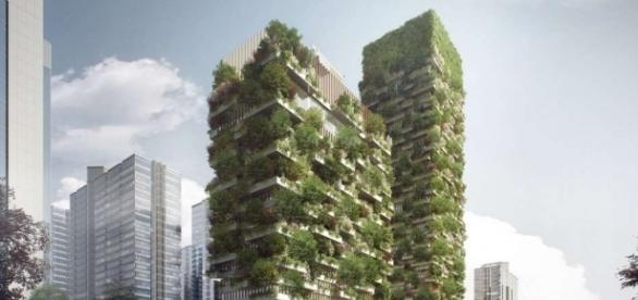 Projeto de jardins verticais na China (Imagem: Stefano Boeri Architetti)