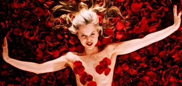 """1000+ images about """"AMERICAN BEAUTY"""" on Pinterest 