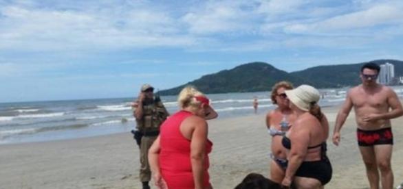 Mulher cega e cão-guia são vítimas de preconceito no litoral catarinense (foto: Portal do Dog)