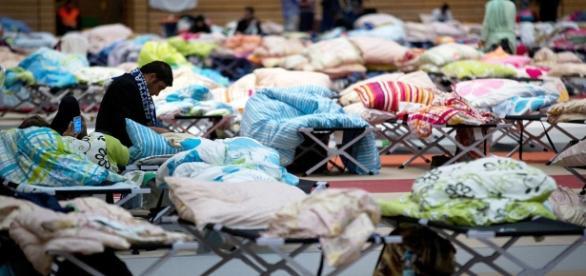 Asylkosten haben sich seit 2014 verdoppelt - Grundversorgung ... - krone.at