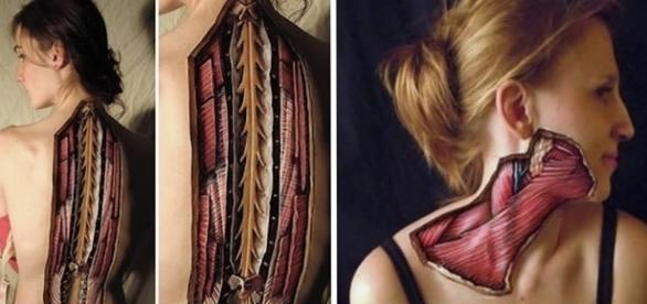Corpo humano visto de um outro modo