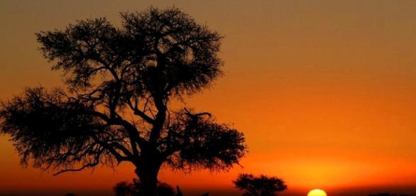 Weigel on TourBilder aus Namibia, Part II - Weigel on Tour - weigelontour.com