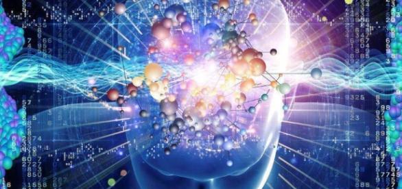 Estudo comprova córtex cerebral e suas sensações