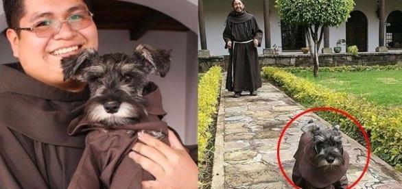 Frei Bigotón foi adotado e agora vive junto com os monges