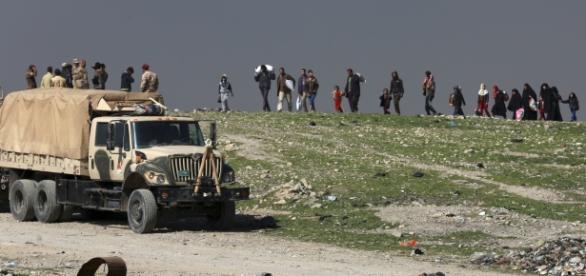 """Irak ruft jetzt Flüchtlinge zur Heimkehr auf - """"Krieg bald beendet ... - krone.at"""