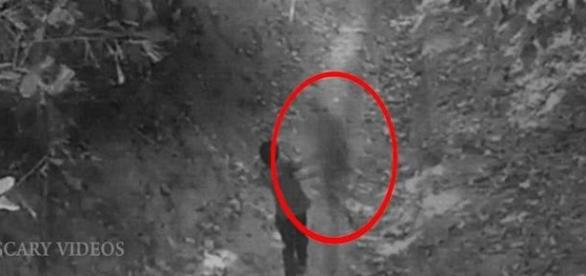 Suposto espírito derruba menino na floresta (Youtube/Scary Videos)