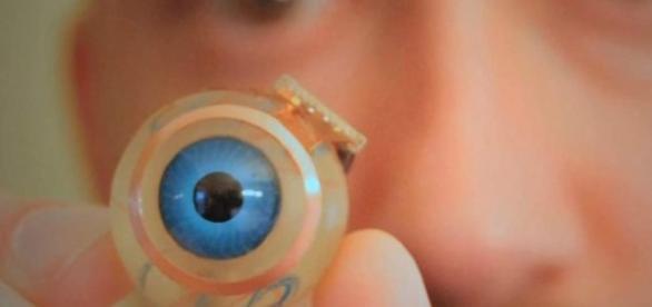Artificial retina - abc.net.au/radionational/programs/scienceshow/3d-eye.jpg/4842956
