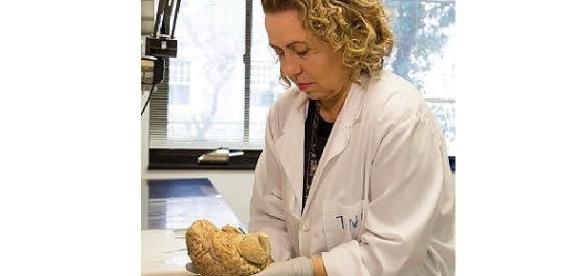 """La scienziata italiana Sabina Berretta racconta la sua carriera di """"cervello in fuga"""""""