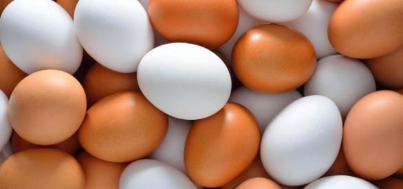 Foto de algumas variedades de ovos