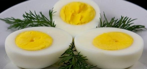 A dieta do ovo auxilia no processo de emagrecimento