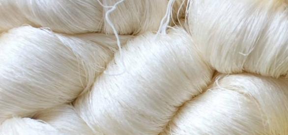 Como fica a seda depois de destilado do bicho-da-seda