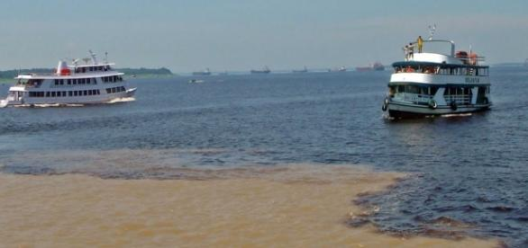 O Rio Amazonas é o maior rio de água doce do mundo