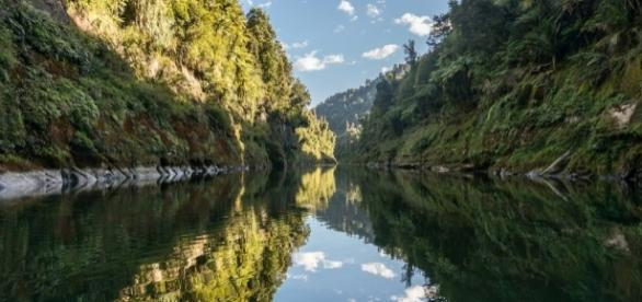 Afternoon shadows, Whanganui River | Late in the afternoon w… | Flickr - flickr.com