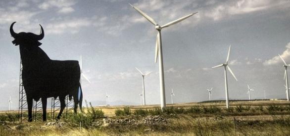 """Toro de osborne"" near to a wind farm"