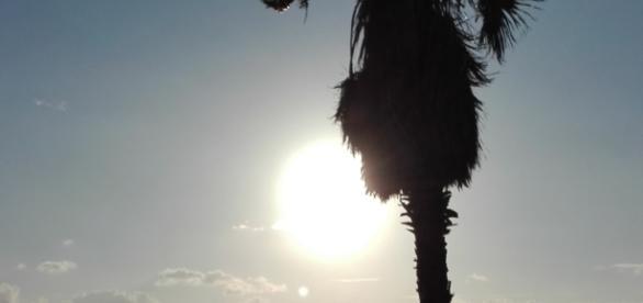 Sonnenuntergang über dem Meer Kato Paphos auf Zypern