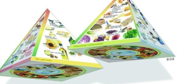 Qué son las Pirámides Alimentarias? Su importancia para la salud ... - wordpress.com